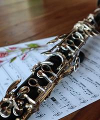 Il mondo multimediale del clarinetto con David Krakauer