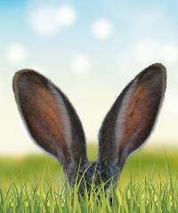 La Domenica di Pasqua ad Alfedena: caccia all'uovo per bambini