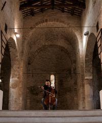 Bach e il Romanico nel Piceno: 6 concerti in streaming dalle Marche