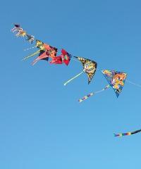 Artevento, Festival internazionale dell'aquilone 2020