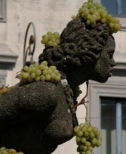 Via alla 96ma Edizione della Sagra dell'uva a Marino
