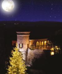 La Magia del Natale nel Castello Incantato