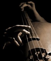 Il violoncellista Mario Brunello in concerto a San Ginesio