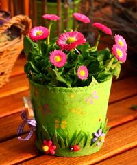ANNULLATO Fiera del Fiore e delle sementi da orto e giardino