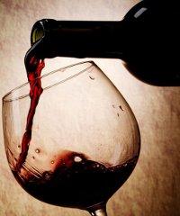 La Festa dell'uva e del vino 2019