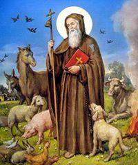 Festa di S. Antonio a Civitella San Paolo