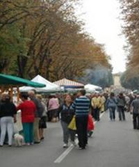 La Festa del Forestiero, degustazioni e artigianato