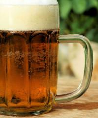 Burgus Lupuli, festa della birra artigianale