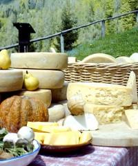 Sagre e Feste a Cervignano del Friuli - Virgilio