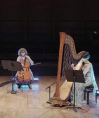 Concerto online