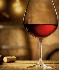 Il giorno di Bacco: viaggio nella Cultura del Vino a Palombara Sabina