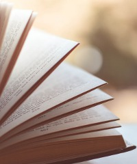 Raccolti Festival: presentazioni di libri, reading e piccoli concerti