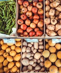Mercato della Terra a Bergamo
