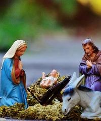 """Natale a Vigevano: sono tutti """"Pazzi per il Presepe"""""""