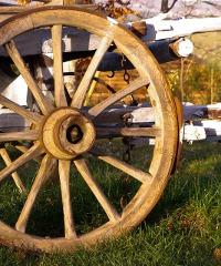 Fiera del Santo Cristo e Mostra delle macchine agricole e delle attrezzature enologiche