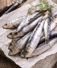 Fish & Chef, festa dei sapori del lago