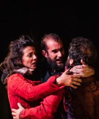 Prato inglese: sere d'estate con Shakespeare al Teatro Carignano