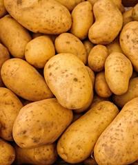Festa della patata