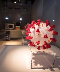 Human Virus: la mostra a Palazzo Zaguri