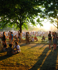 Decima Fest: cinema e musica al Parco Decima