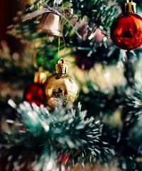 Fiera degli Alberi di Natale 2019