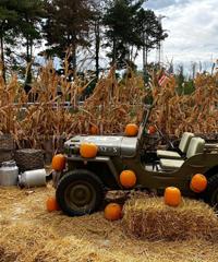 Al Villaggio delle Zucche si celebra la vita agreste