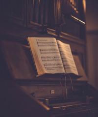Organizzando: rassegna di concerti per organo