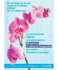 L'Orchidea UNICEF a Modena e provincia