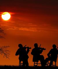 Concerti gratuiti al tramonto all'Idroscalo di Milano