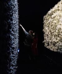 Synaesthet X,progetto artistico di Paolo Iammarrone e Vincenzo Fiorillo