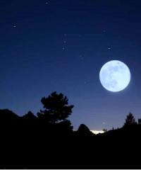 La notte è piccola: trekking serale per famiglie