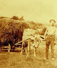 Festa contadina a Marano di Castenaso 2019