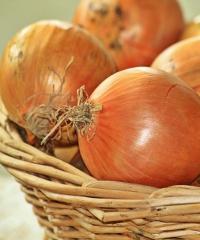 """Il """"mercato agricolo e non solo..."""" di Alzano Lombardo"""