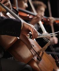 L'Orchestra Filarmonica Marchigiana ad Ascoli Piceno