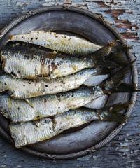 Festa del Pesce a Positano