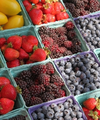 Mercato della Terra, Slow Food torna in piazza