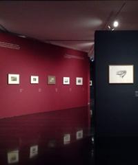 Henry Moore in mostra, 70 disegni al Museo del Novecento