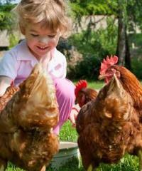 Per corti e cascine 2019, giornata di fattorie a porta aperte