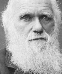 Darwin Day 2020 a Mestre, la festa della ricerca scientifica
