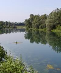 Festa del fiume: tra natura, musica e gusto