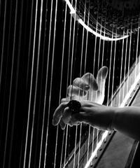 Concerto di musica classica online con l'ensemble Icarus