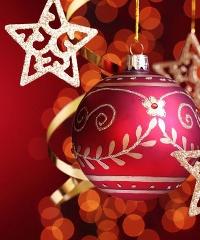 L'Albero di Natale di Ferrara, emozioni di luce
