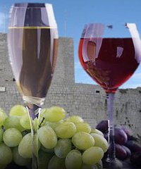 Festeggiamenti di S. Antonio. Mostra del Vino e del pesce