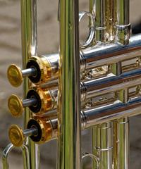 Il trombettista Jaimie Branch in concerto