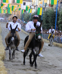 Palio dell'Anguria