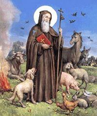 Festeggiamenti di Sant'Antonio