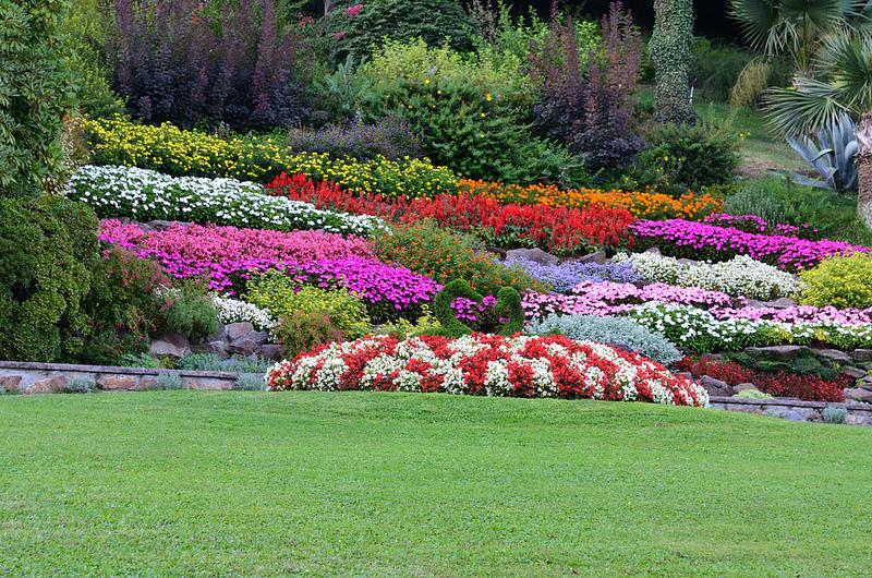 parchi fioriti e orti botanici