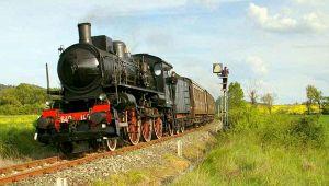 treni-vapore