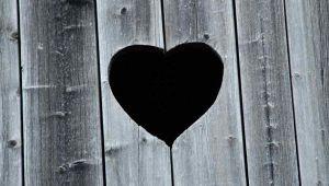 giornata-cuore
