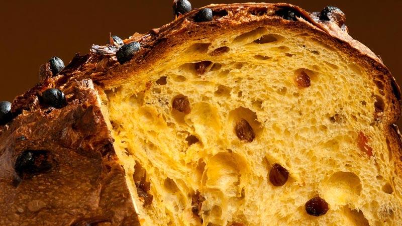 Re Panettone: ecco dove trovare i migliori panettoni d'Italia